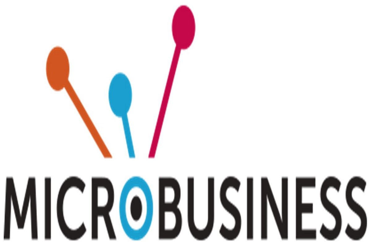 What is Micro Business? Definition and It's Three Types.
