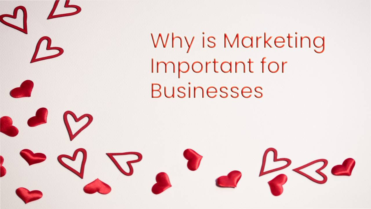 The Importance of Marketing in Business by Experts
