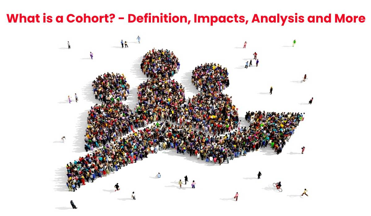 What is a Cohort? – Definition, Impacts, Analysis and More