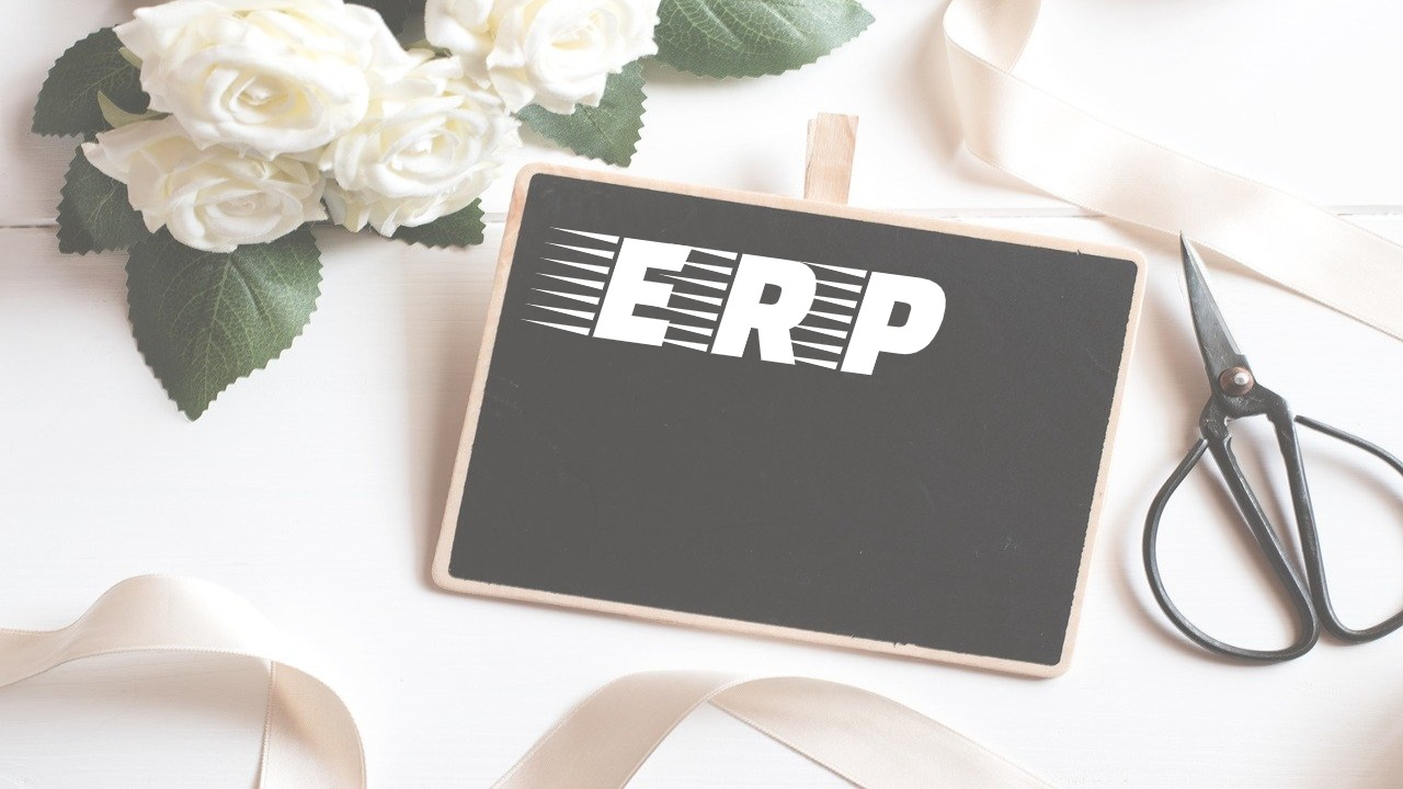 What is ERP? – How does it Work? and More