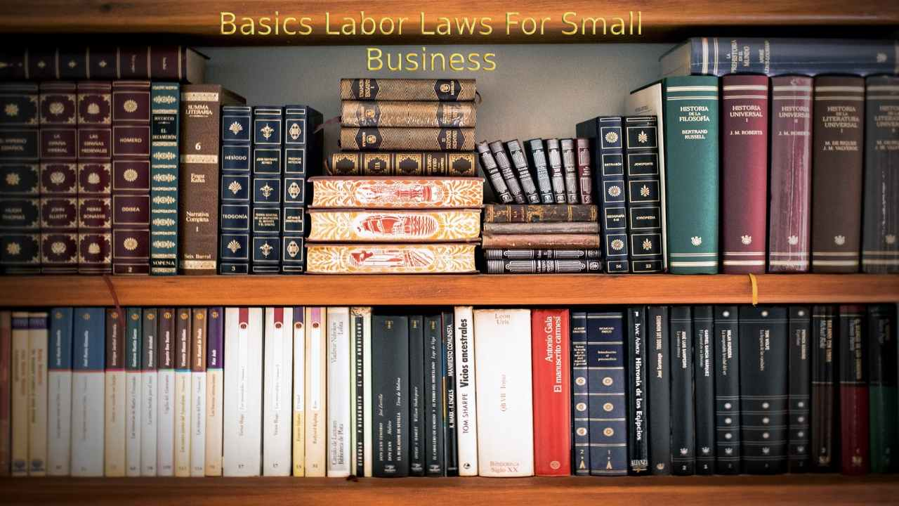 Labor Law Basics That Every Small Business Owner Should Know