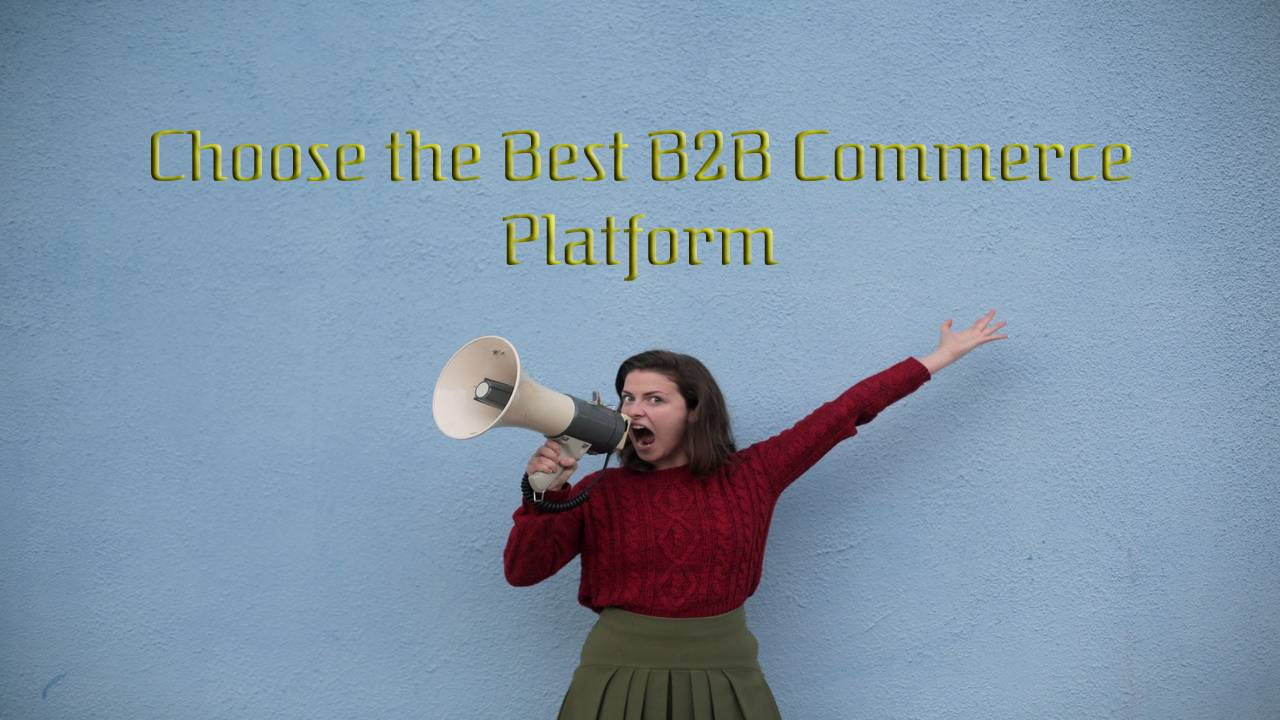 How to Choose the Best B2B Commerce Platform
