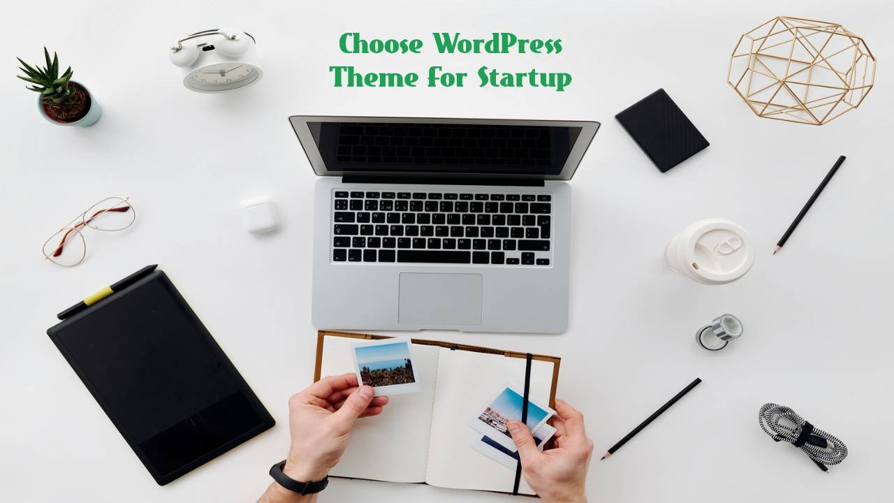 How To Choose WordPress Theme For Startup?
