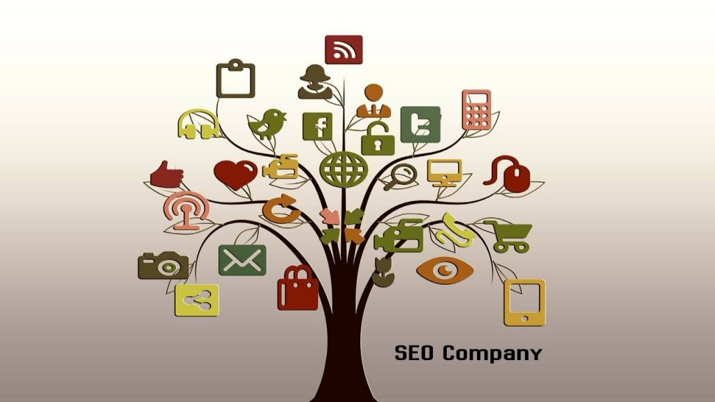 What are the traits of a Suitable SEO company