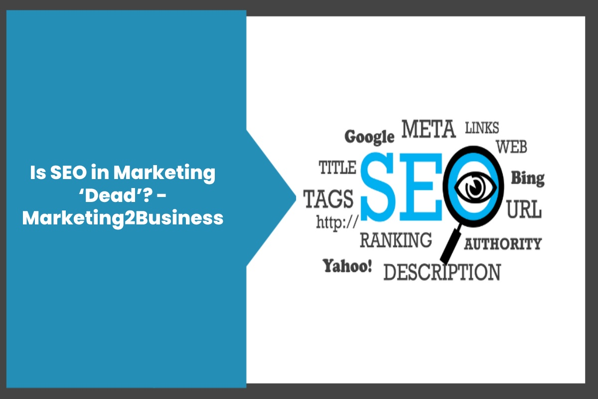 Is SEO in Marketing 'Dead'?