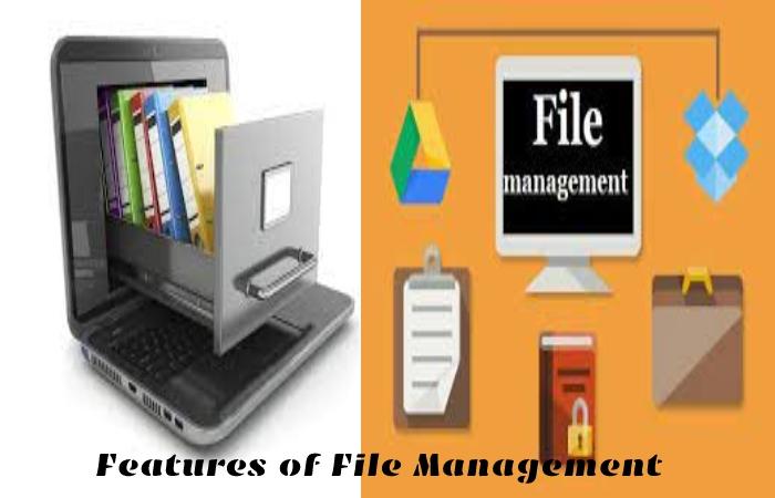 File Management (1)