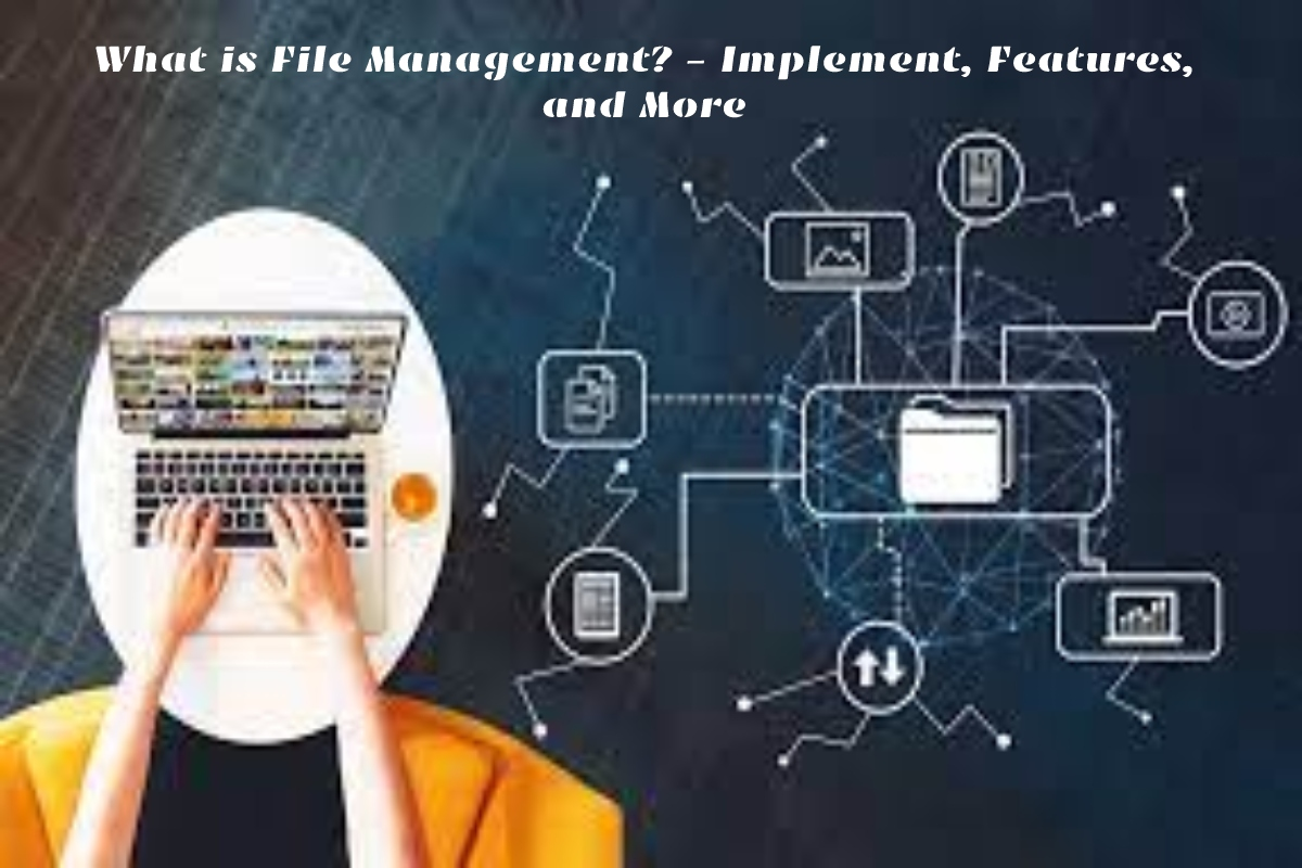 What is File Management? – Implement, Features, and More