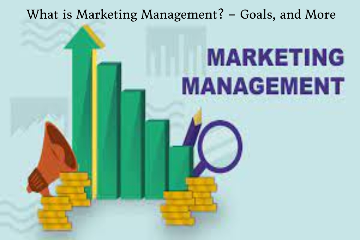 What is Marketing Management? – Goals, and More