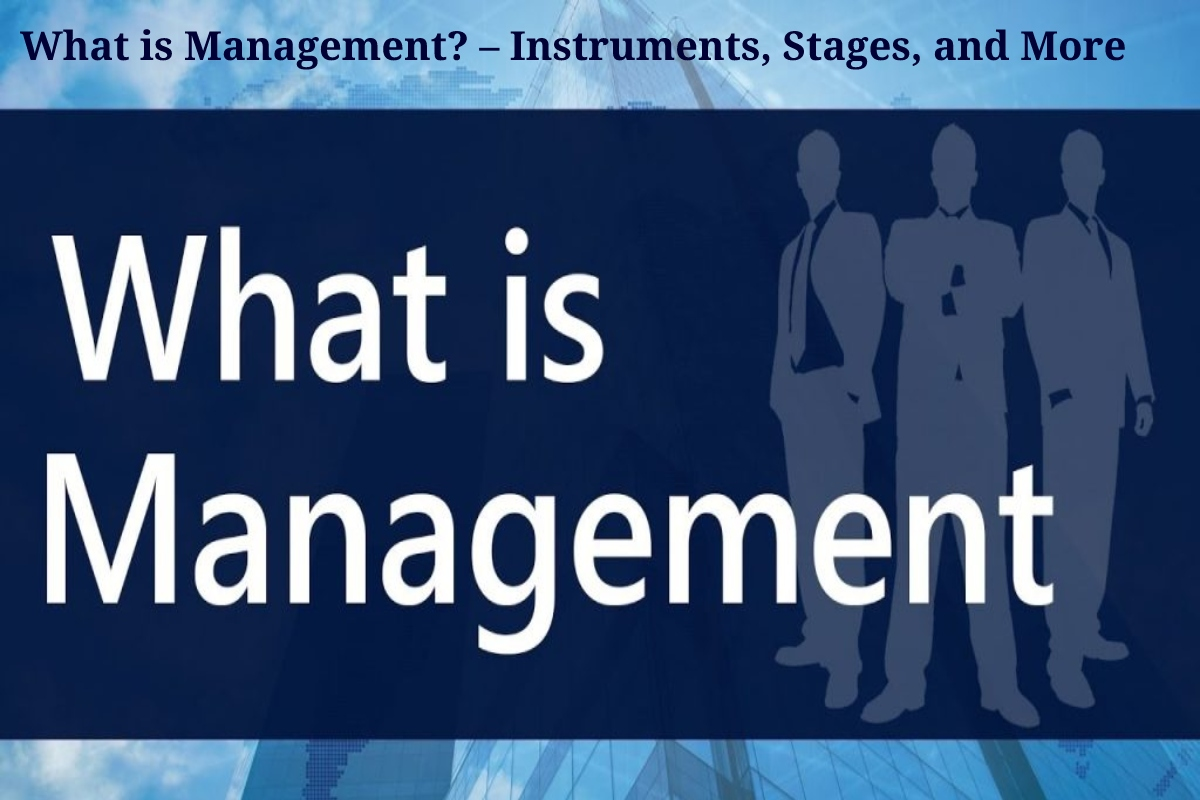 What is Management? – Instruments, Stages, and More
