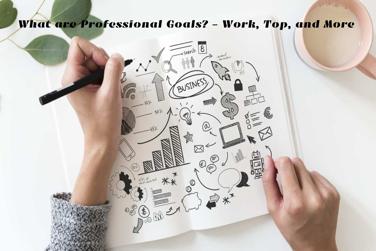 What are Professional Goals? – Work, Top, and More