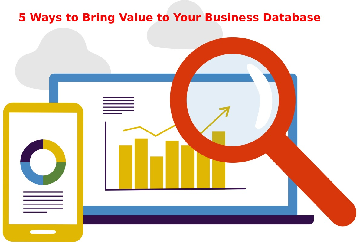 5 Ways to Bring Value to Your Business Database